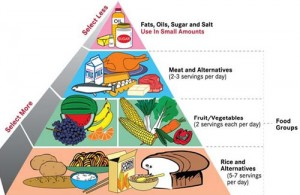 obesity-21-food-pyramid-1tors4t