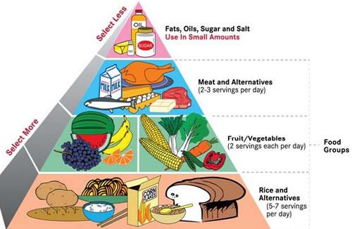 Healthy Food Pyramid Song